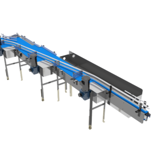 Front View of Pressureless Single Filer Conveyor